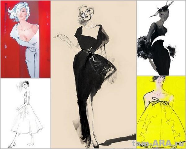 Иллюстратор модных журналов Дэвид Доунтон (David Downton)