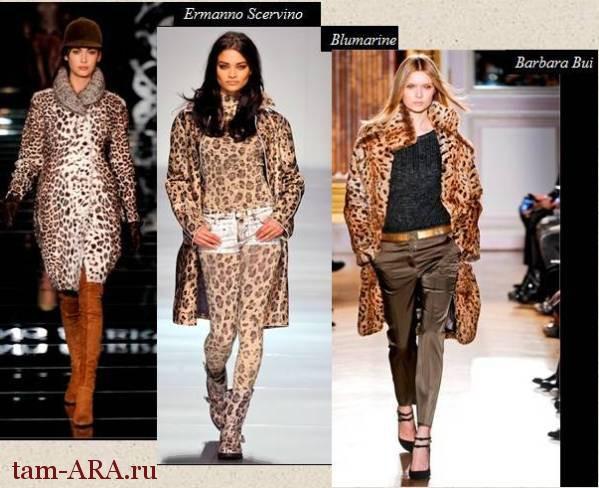 Самое модное животное – леопард!