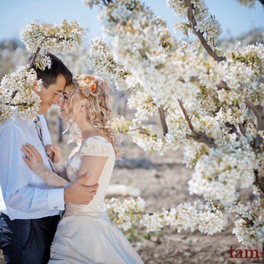 свадьба, обручальные кольца